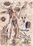 Wendigo Anatomy Study