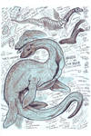 Nessie, the Loch Ness Monster Study