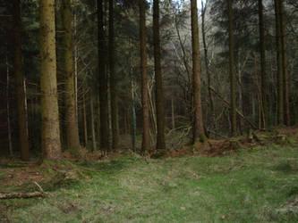 Treeage moar by UnicornReality