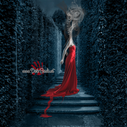 Delusion by MadaB