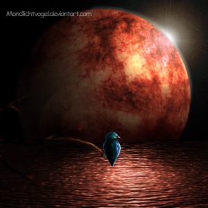 Mondlichtvogel's Profile Picture