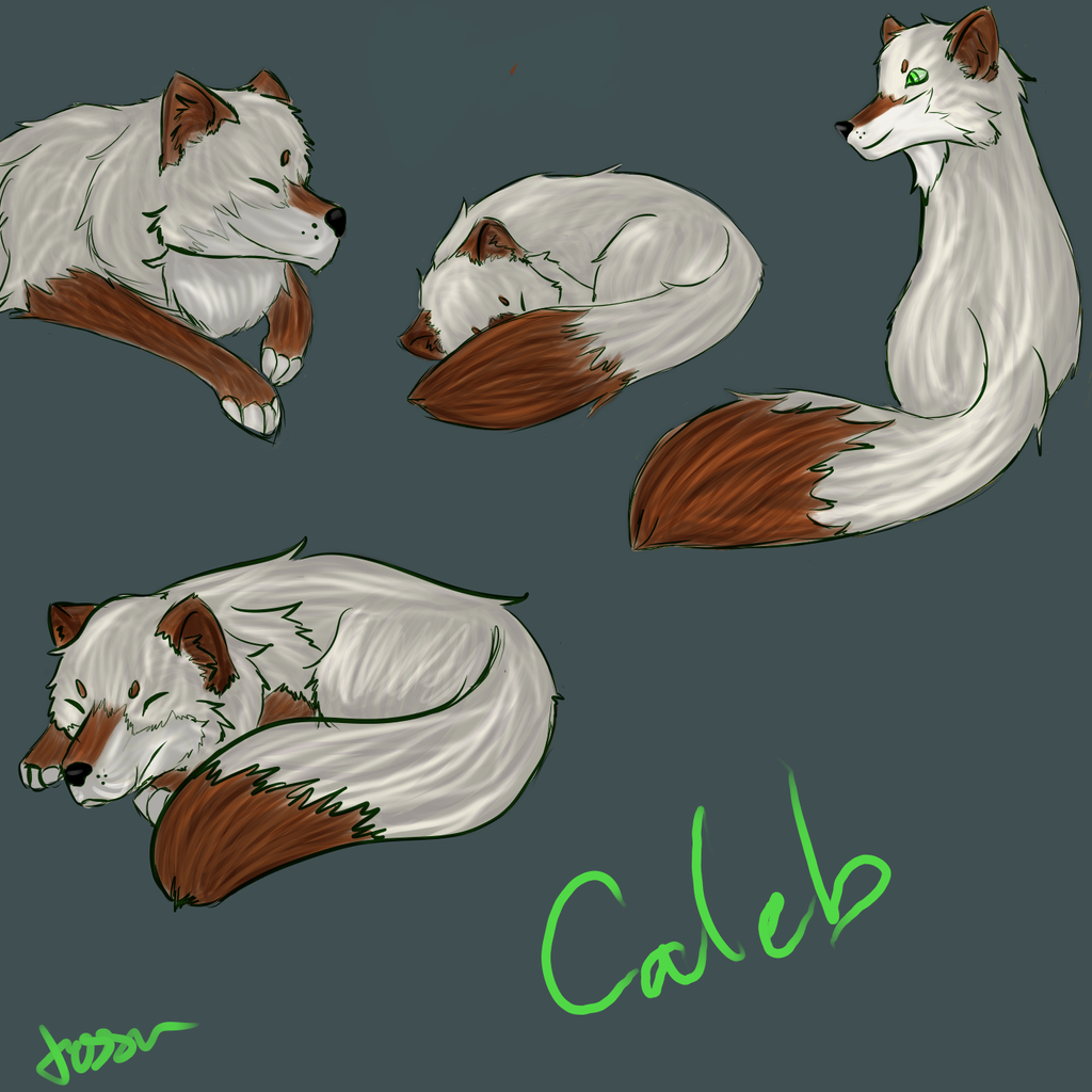 a fox named caleb by waywardJellyfish