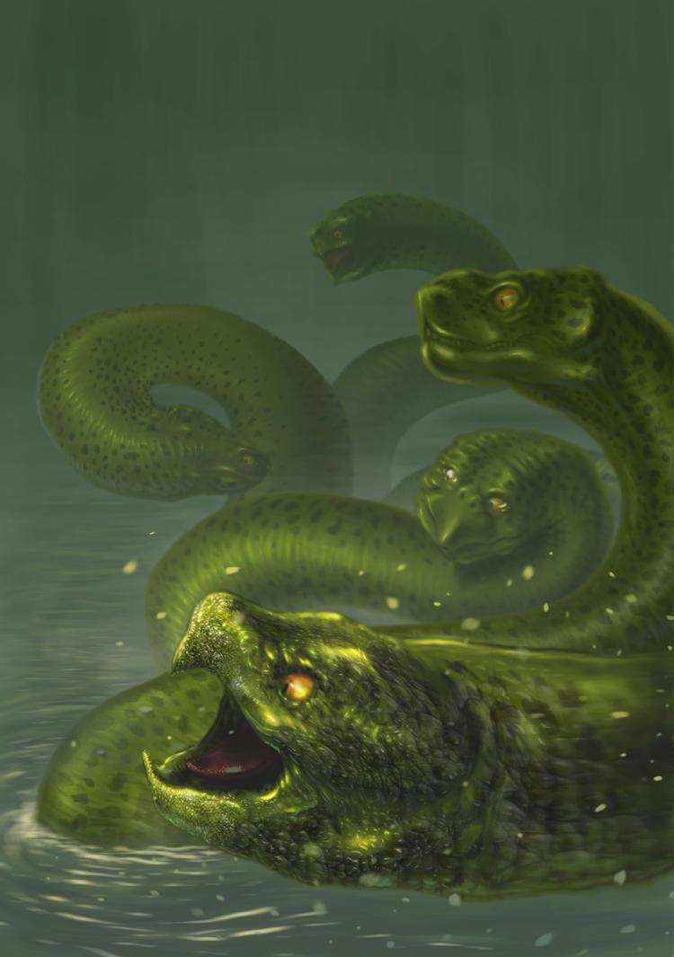 Hydra by sacredcross