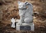 Roo's Angel Kitty
