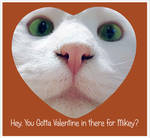 Hey, You Gotta Valentine in there for Mikey?