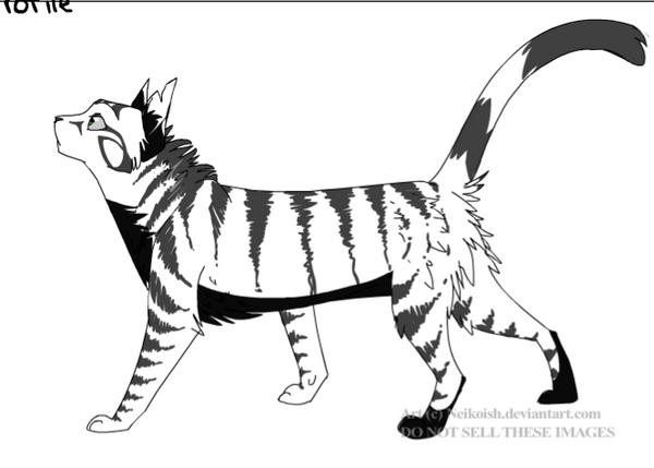 Warrior Cat OC - Skullfur by TheBlackHowler
