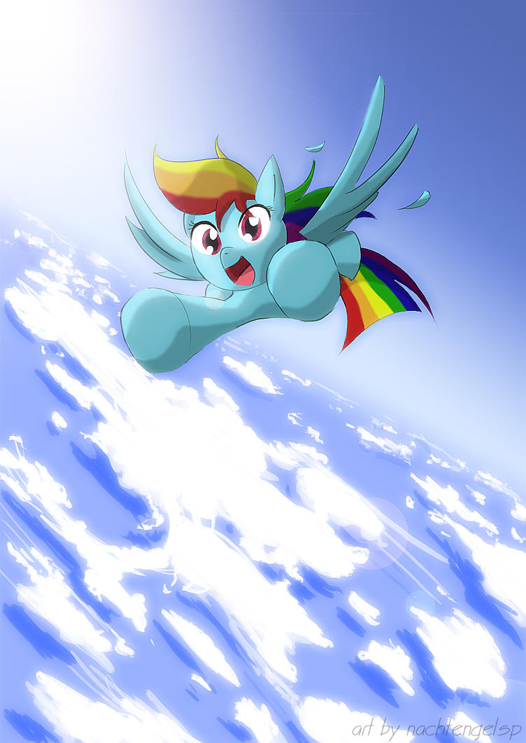 Flying with Dashie by Nachtengelsp