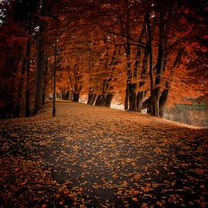 Polish golden autumn