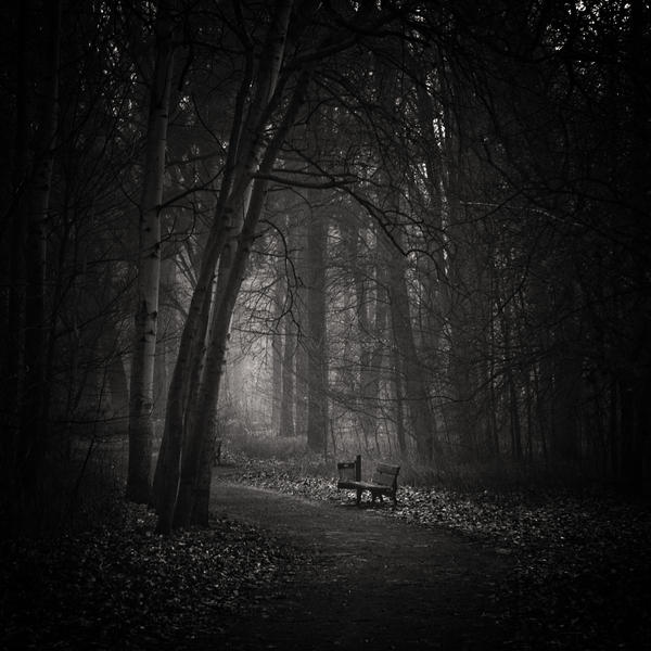 Silence... by WiciaQ
