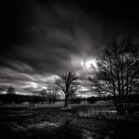 Light and shadow - study XXI