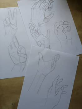 Hand Studies #1-3