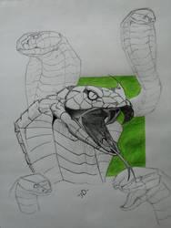 Animal Study #1 Snakes