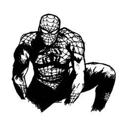 Spiderman by FXwizeguy