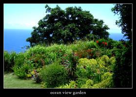 ocean view garden by xanadian