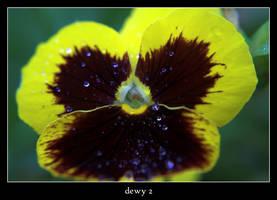 dewy 2 by xanadian