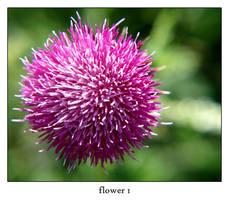 flower 1 by xanadian