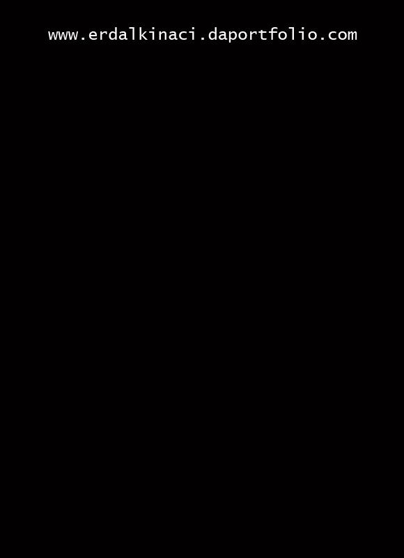 erdalkinaci's Profile Picture