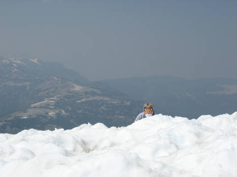 Stupidfox - Snow Hunting