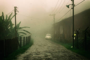 Deep in the fog, lost and cast away...