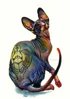 Tattooed Sphynx Cat by umantsiva