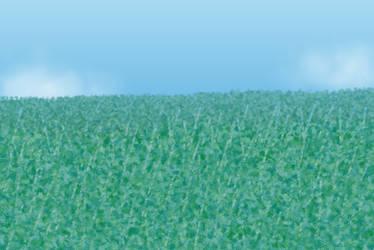 Seafoam Grasses