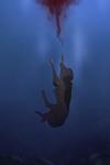 SVAJONE | Drowning [MCC]