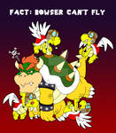 Even Bowser has Limitations