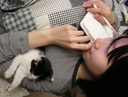 with Daihuku by Saho-Nyamaguchi