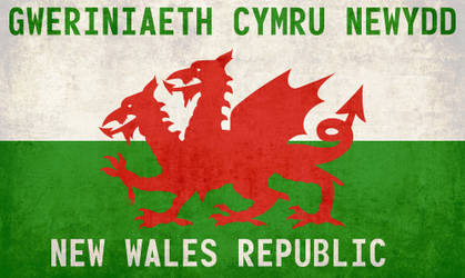 NWR - Flag of the New Wales Republic