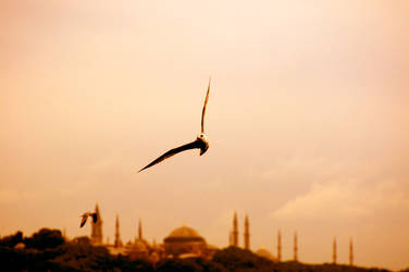 ISTANBUL by nefson