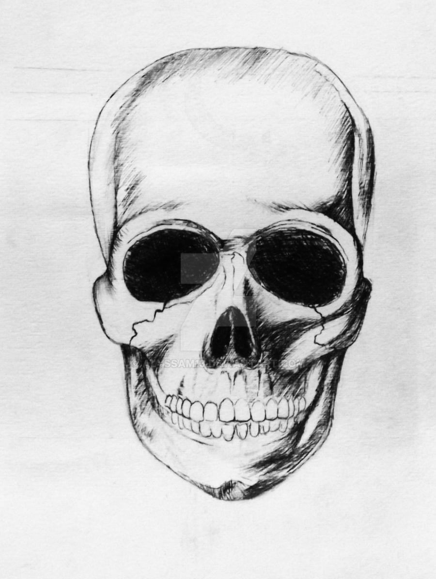 Study of a Skull by Alyssam13