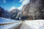 Winter road by Cleicha
