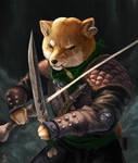 The Shiba Rogue