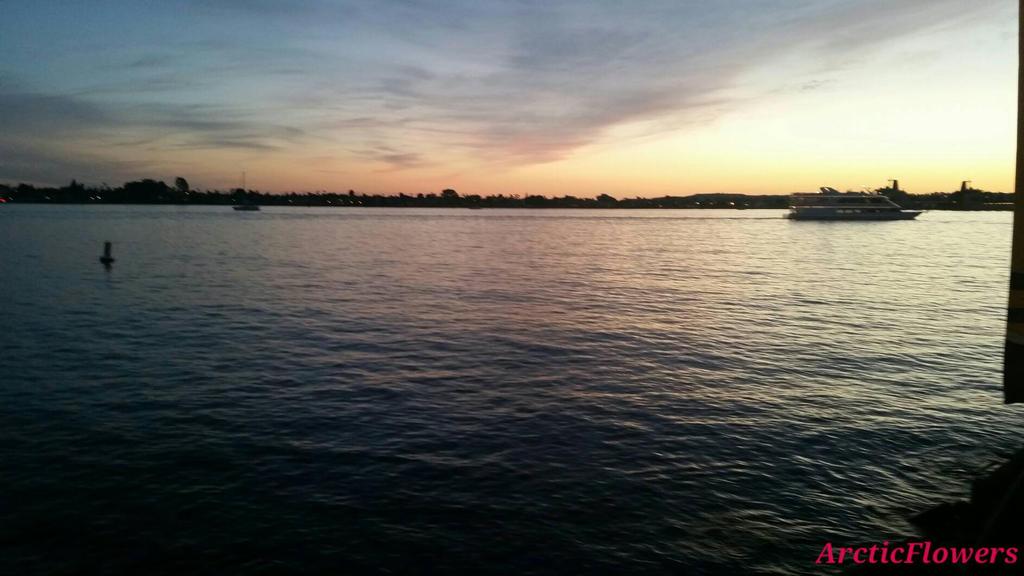Bayside Sunset Tour