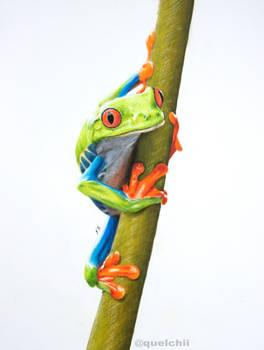 Frog (drawing)