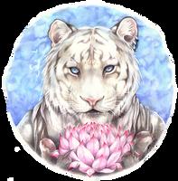 Lotus by m-lupus