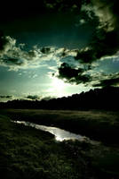 river, forest, midday by slash-godhateme