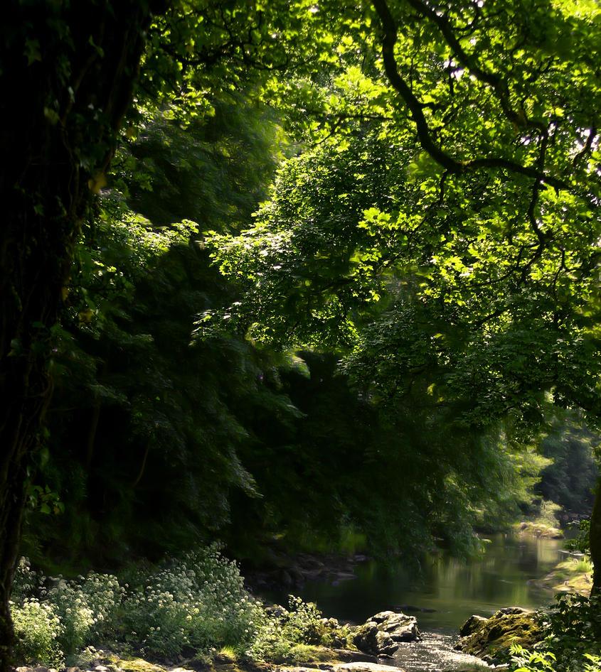 STOCK BG 82 sunlit river by MaureenOlder