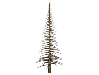 STOCK PNG its a naked tree by MaureenOlder