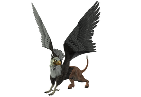 STOCK PNG gryphon2 by MaureenOlder