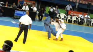 Alarcon Fight  (12)