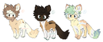 Nyp adopts! Open by Acattie