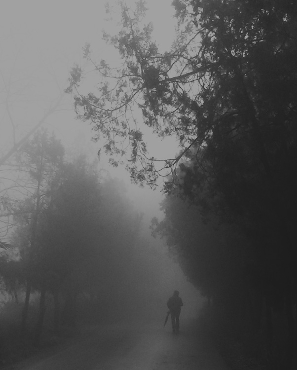 misty and mystical by OnurY