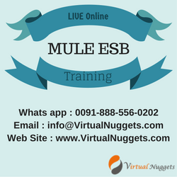 MuleSoft ESB Training by vasubuddi on DeviantArt