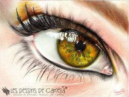 Eye by Camelia-07