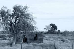 abandoned memories