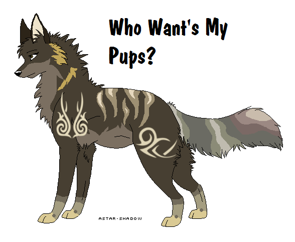 Pregnant Wolf Adopt My Pups By Wolfy980 On Deviantart