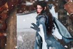 Cosplay: Arwen Undomiel III by Mircalla-Tepez