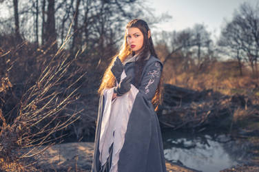 Cosplay: Arwen Undomiel VI