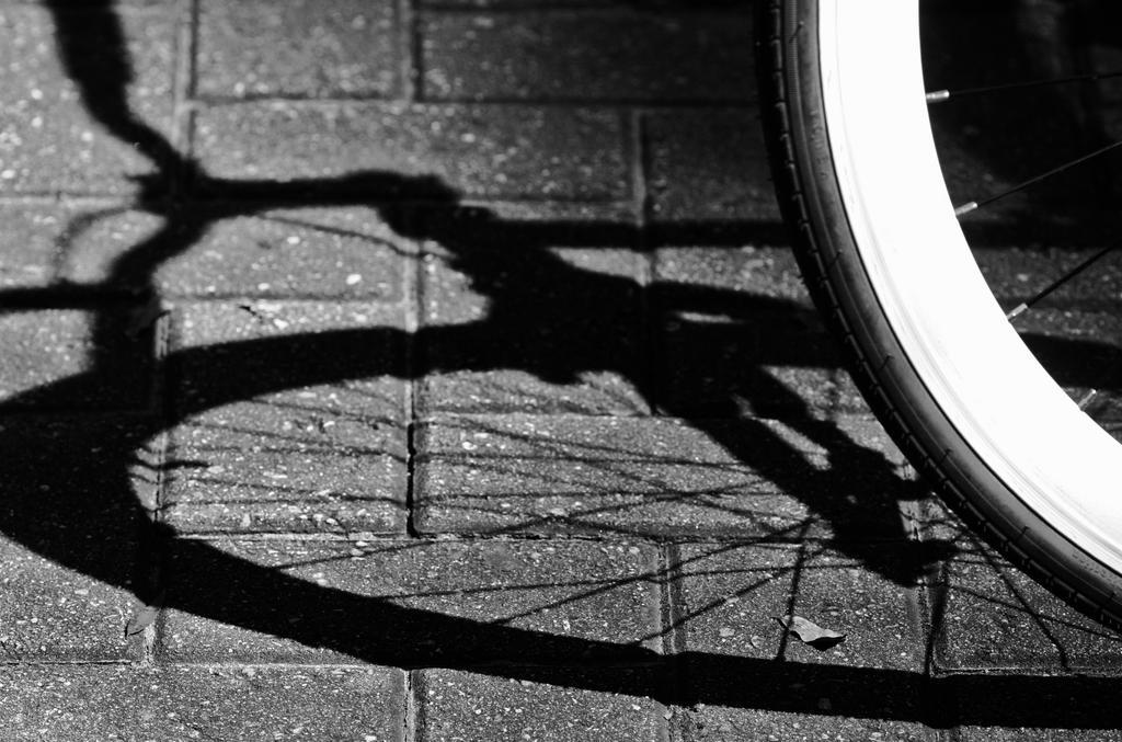 IMG 3363wheel by jwebbermedia